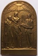 Médaille. Ligue Nationale Des Ex Prisonniers De Guerre. 1919. Bernard Callie. 45 X 65 Mm - 82 Gr - Professionnels / De Société