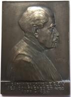 Médaille. Au Batonnier Louis Leroy - Ses Confrères Et Amis 1879 - 1929. Charles Samuel. 47 X 65 Mm - 84 Gr - Professionals / Firms