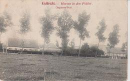 Kieldrecht Hoeven In Den Polder - Beveren-Waas