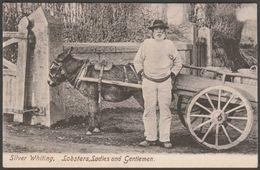 Billy Renfree, Fish Seller, Penzance, Cornwall, C.1905 - Frith's Series Postcard - England