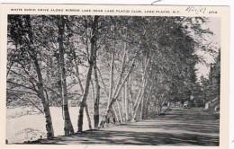 New York Lake Placid White Birch Drive Along MIrror Lake Near La