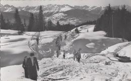 Suisse - Crans Sur Sierre - Ski Neige - VS Valais