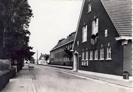 Rijkevorsel Leopoldstraat ( Met Gemeentehuis) - Rijkevorsel