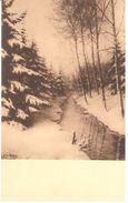 Neufchâteau - L'ardenne - Louis Wilmet - L'hiver Dans Les Bois - Neufchâteau