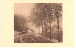 Neufchâteau - L'ardenne - Louis Wilmet - Brume D'automne - Neufchâteau