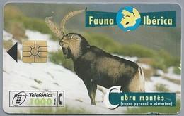 ES.- Telefonica De Espana. CabiTel. Abra Montés. Capra Pyrenaica Victoriae. Steenbok. Fauna Iberica. 2 Scans - Telefoonkaarten