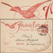 Allemagne 1900. Poste Privée Courier De Görliz. Entier Commémoratif, Clôture Des Activités. Moineau Remplaçant Le Pigeon - Moineaux