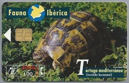 ES.- Telefonica De Espana. CabiTel. Tortuga Mediterranea. Testudo Hermanni. Schilpad. Fauna Iberica. 2 Scans - Schildpadden