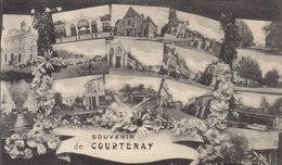 °°°°   COURTENAY     °°°°    ///////  REF  NOV.  17  /////  N° 5012 - Courtenay