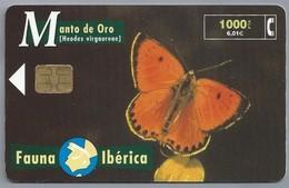 ES.- Telefonica De Espana. CabiTel. Monto De Oro. Heodes Virgaureae. Vlinder. Fauna Iberica. 2 Scans - Telefoonkaarten