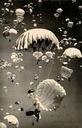 II WAR F 31 - 1939-45
