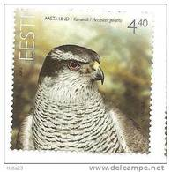 Estonia Estland - Goshawk Bird Stamp 2008 MNH - Estland