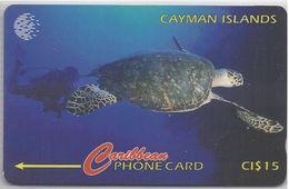 CAYMAN ISLANDS - HAWKSBILL TURTLE - 47CCIC - Cayman Islands