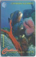 CAYMAN ISLANDS - UNDERWATER SCENE - 64CCIB - Cayman Islands