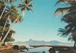CPA-1980-POLYNESIE-TAHITI A L AUBE-TBE - Französisch-Polynesien