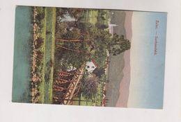 SLOVENIA ZALEC Nice Postcard - Slovénie
