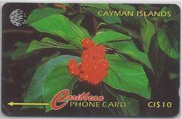 CAYMAN ISLANDS - BROADLEAR FLOWER - 94CCIB - Cayman Islands