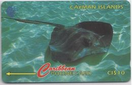 CAYMAN ISLANDS - STRINGRAY - 94CCIE - Cayman Islands