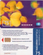 TARJETA TELEFONICA DE KAZAJSTAN (528) - Kazakhstan