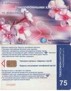 TARJETA TELEFONICA DE KAZAJSTAN (536) - Kazakhstan