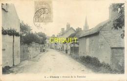 41 Chouzy Sur Cisse, Avenue De La Fontaine, Affranchie 1906 - France