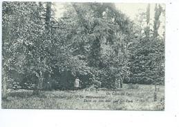 Oudenaarde Oudenaerde - Gesticht Van Dr De Meulemeester - Zicht Op Een Deel Van Het Park - Oudenaarde