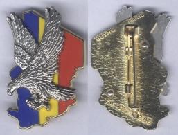 Insigne De L'Opération Epervier - Tchad 1986/2013 - Armée De Terre