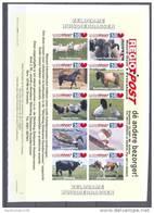 Mfo09b NEDERLAND STADSPOST BOERDERIJ DIEREN VOGELS PAARD GEIT SCHAAP KOE EEND BIRDS HORSE COW GOAT SHEEP DUCK PF/MNH # - Boerderij