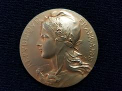 Médaille Jeton VILLE DE PARIS ( Blason 75 )  REPUBLIQUE FRANCAISE Marianne ( F RASUMNY F.R ) HD - France