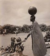 Grande Photo Tirage Argentique Un Marché Au Congo Belge 1953 - Afrique