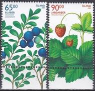 Island Icland 2005 Pflanzen Plants Obst Früchte Fruits Beeren Heidelbeeren Erdbeeren, Mi. 1106-7 ** - 1944-... Republik