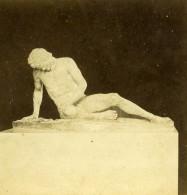 Italie Rome Sculpture Antique Statue Gladiateur Ancienne Photo Stereo 1865 - Stereoscopic