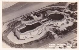 Florida Marineland Air View Of Marine Studios Real Photo