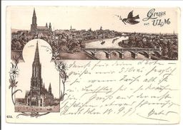 Ulm. Gruss Aus Ulm 1897. Panoram. Münster. Schwalbe - Ulm