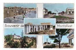 Dept 33,Gironde,Cpsm Souvenir De Montalivet - Other Municipalities