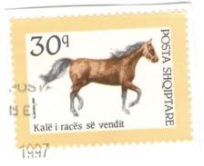 Albania Used On Paper 1992 Horse Races - Albania