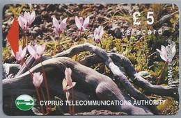 CY.- Telefoonkaart. Cyprus Telecommunications. Akamas Forest Plantes Fleurs Cyclames, £ 5 - Telecard. 2 Scans - Cyprus