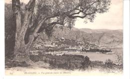 Beaulieu-sur-Mer (Alpes-Mme)-1906-Vue De La Ville Entre Les Oliviers-Arbre Remarquable-oblitération-La Ferté S.Jouare - Beaulieu-sur-Mer