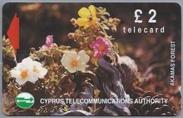 CY.- Telefoonkaart. Cyprus Telecommunications Authority. Akamas Forest. £ 2 - Telecard. 2 Scans - Bloemen