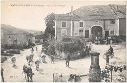 52. CHAUMONT-LA-VILLE. Place De La Fontaine - Autres Communes