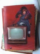 Monkey With Television - Geklede Dieren