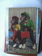 Monkey And Monkey Traveling - Geklede Dieren