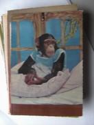 Monkey In Bed - Geklede Dieren