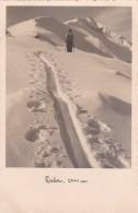 Preber 2741 M * 1937 - Österreich