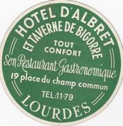 FRANCE  -  HOTEL LUGAGGE  LABEL - HOTEL D'ALBRET - LOURDES - Hotel Labels