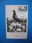 """Carte-Maximum N°1091 En L'honneur De La Colombophilie Pigeon """" Bleu-Sion-Lamotte """"  1957 - Maximum Cards"""