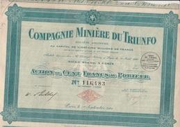 ACTION DE CENT FRANCS - COMPAGNIE MINIERE DU TRIUNFO -   ANNEE 1924 - Mines