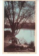 CPA - Coloriée   - Pont-de-Vaux  (Ain)  -  Les Bords De La Reyssouze. - Pont-de-Vaux