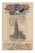 18481 - Gruss Aus Ulm Münster Armoiries - Ulm