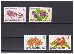 Caiman Nº 485 Al 488 - Caimán (Islas)